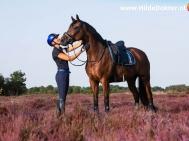 Hilde Dokter Paardenfotografie - Portretfoto's - 10