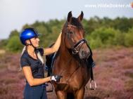 Hilde Dokter Paardenfotografie - Portretfoto's - 15