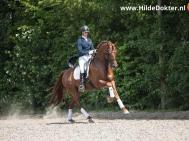 Hilde Dokter Paardenfotografie - Rijfoto's - 10