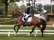 Hilde-Dokter-Paardenfotografie-Rijfotos-13