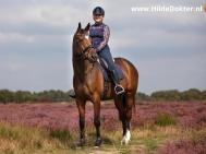 Hilde-Dokter-Paardenfotografie-Rijfotos-14
