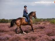 Hilde-Dokter-Paardenfotografie-Rijfotos-15