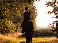 Hilde-Dokter-Paardenfotografie-Rijfotos-17
