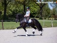 Hilde-Dokter-Paardenfotografie-Rijfotos-4