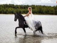 Hilde Dokter Paardenfotografie - Rijfoto's - 8